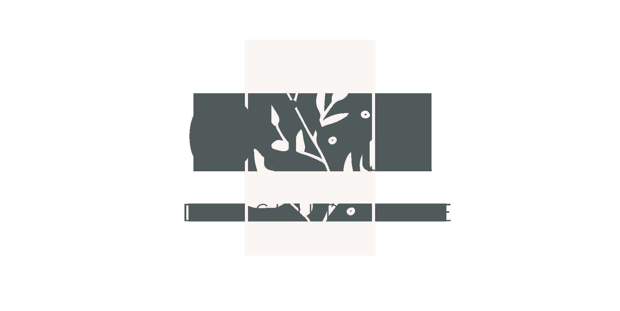 Olivia Theme